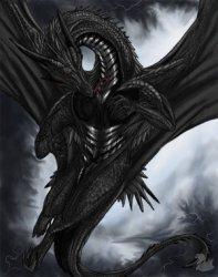 dragon71